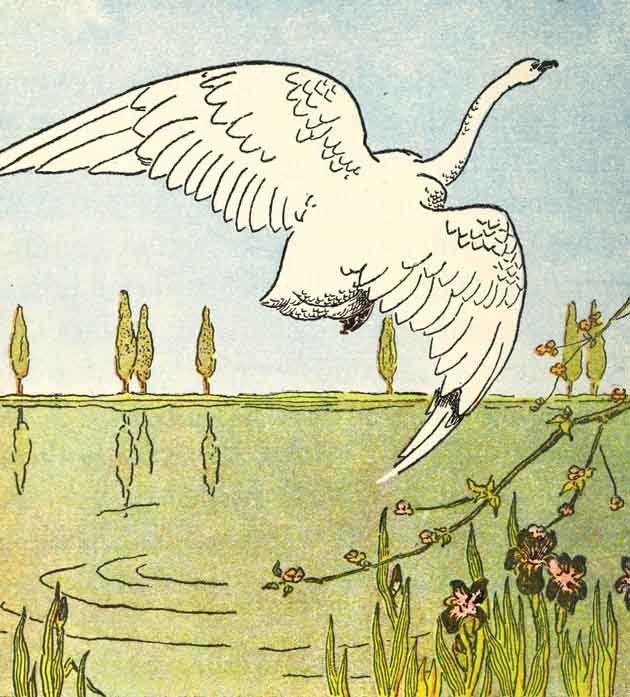 The Duckling flying over the pond