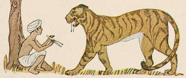 Illustration for Little Toe Bone by Maud Hunt Squire
