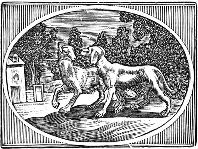 Illustration for The Kennel in Council by Mary Boyle