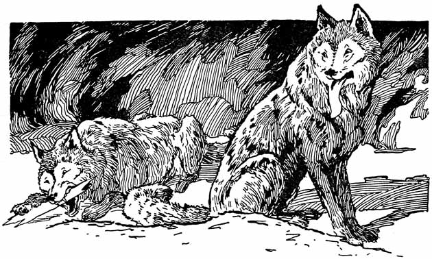 Illustration for The Further Adventures of Paupukewis and the Wolves by Warner Carr