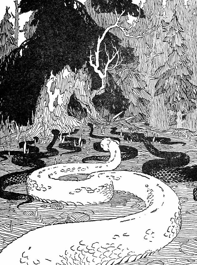 Illustration for Manabozho's Adventure with the Sea Serpent by Warner Carr